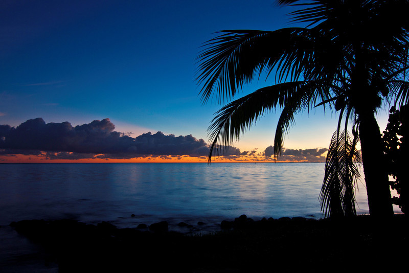 ~ Tropical Sunrise ~
