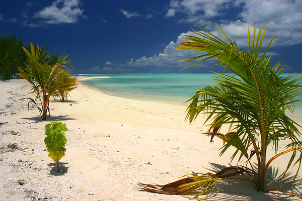 Desserted beach on Motu Tapu, Small island within Bora Bora's lagoon.