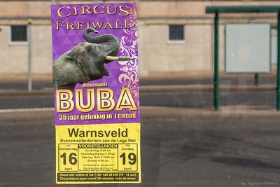 Circus Freiwald en Buba
