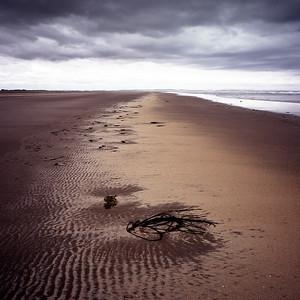 Lindisfarne, north shore, looking towards Scotland