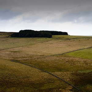 North from Hadrian's Wall, Hotbank/Highshield, Northumberland UK