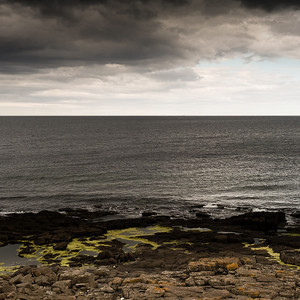 Beach by Craster, Northumberland UK