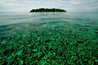 Borneo_003