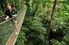 Borneo_041