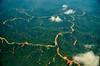 Borneo_075
