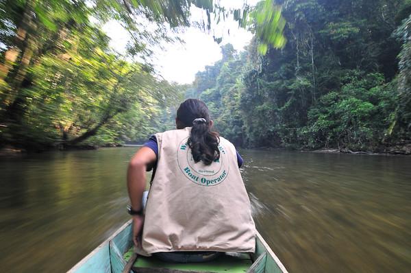 Borneo_039