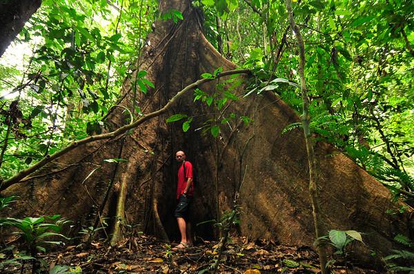 Borneo_042