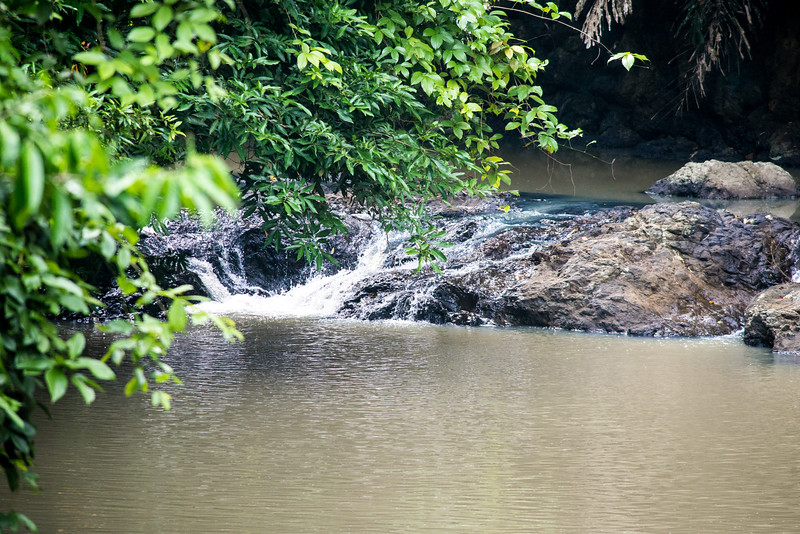 Rapids at Tabin