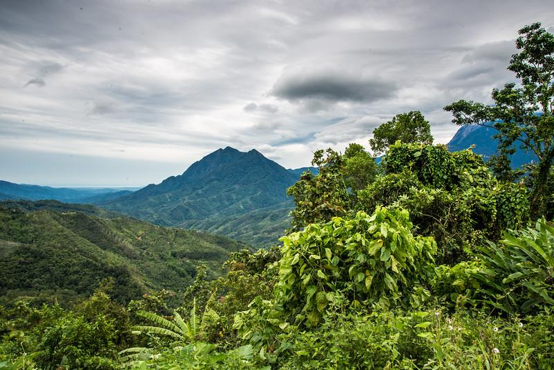 Mount Kinabalu Foothills