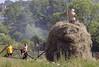 Making hay, near Banovici, Bosnia-Hercegovina, Wed 11 June 2014
