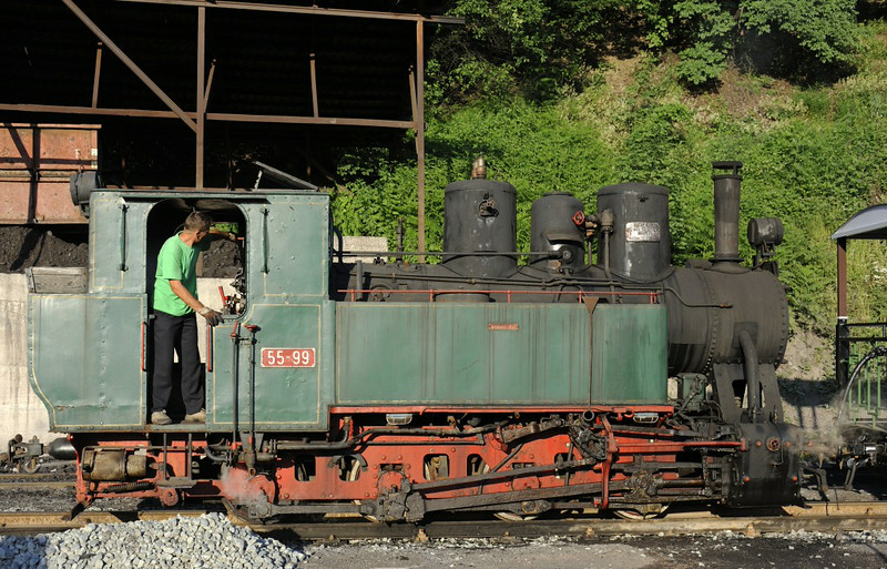 55-99, Oskova, Bosnia-Hercegovina, Tues 10 June 2014.  A last look at the 0-8-0T at the end of our first charter.