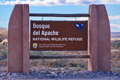 20161129_Bosque_del_Apache_NWR_Sign_D75_1515