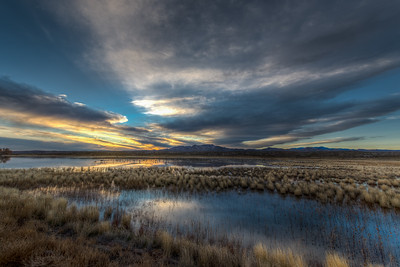 Sunset at Bosque del Apache