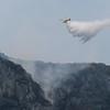 Incendio en Llutxent-Gandía: Greenpeace reclama una mayor planificación en incendios para evitar episodios de emergencia social