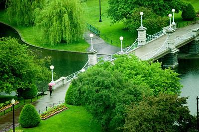 A Woman Walking Under Rain in Lagoon Bridge, Boston Public Garden.
