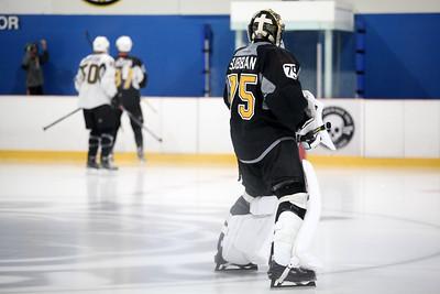 Boston Bruins 2016 Training Camps