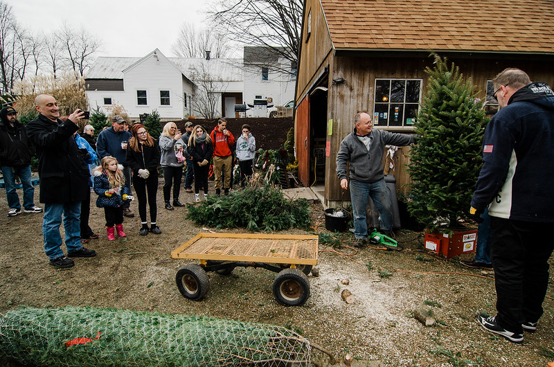 The Boston Bruins Foundation was on hand to give out free Christmas trees to veterans at the Gardner's Spot in Leominster on Friday, December 8, 2017. SENTINEL & ENTERPRISE / Ashley Green