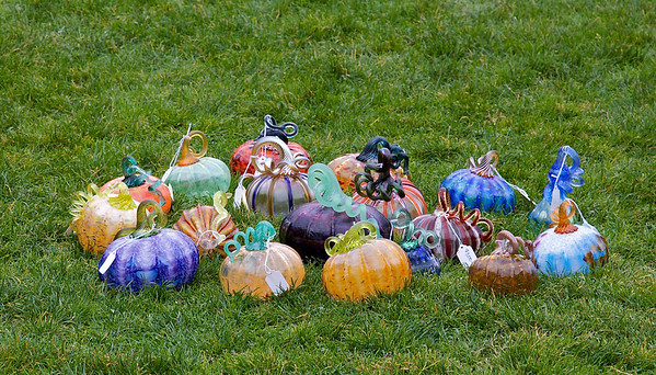 Some glass pumpkins at the 2009 MIT Great Glass Pumpkin Patch.  On sale at this annual event are over 1000 handblown glass pumpkins created by student artists in the MIT Glass Lab.