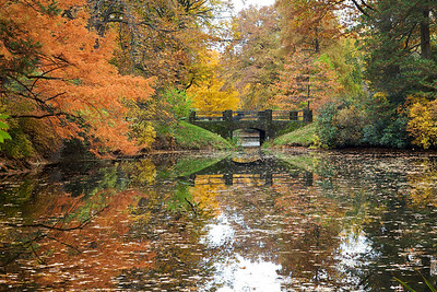 Auburn Lake in Mt. Auburn Cemetery, October 2009