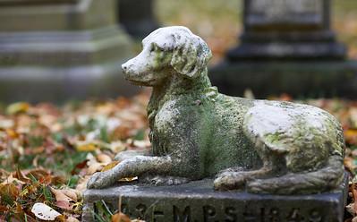 In Mt. Auburn Cemetery
