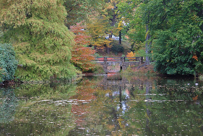 Auburn Lake in Mt. Auburn Cemetery, October 2008