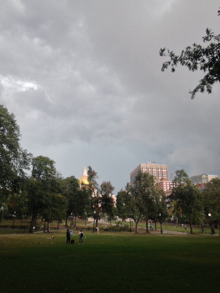 Just as i finished my walk, there was a massive gust of wind, and I witnessed an enormous tree limb fall down onto the Common. You can see the State House in the background