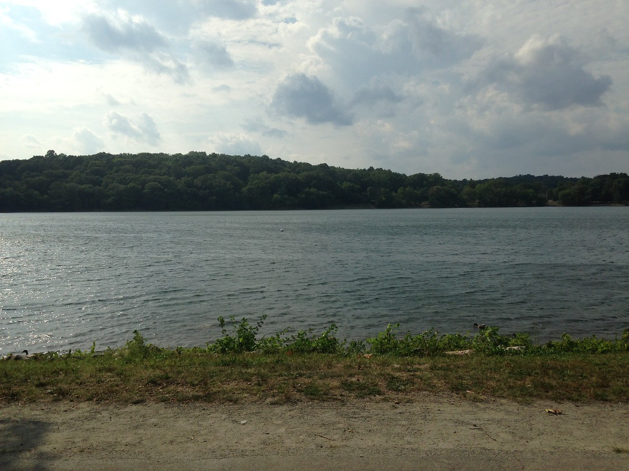 This is the view of Jamaica Pond from Peter the Soofa.