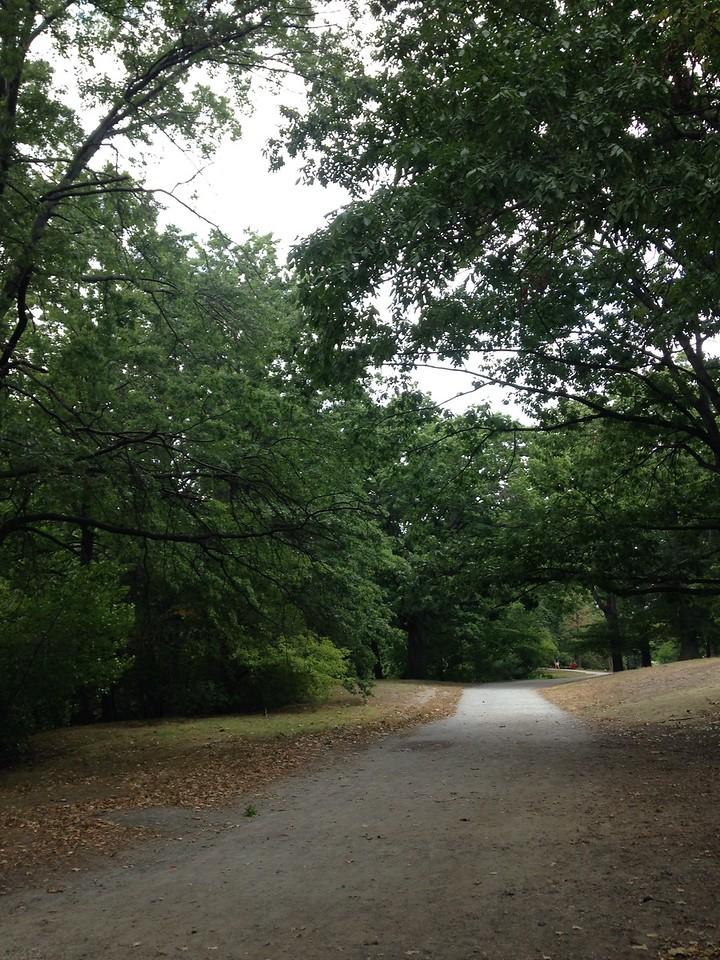 Walking path in the Back Bay Fens.