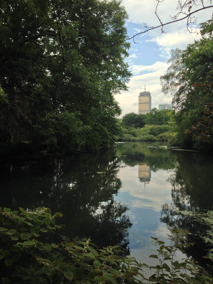 View of the Prudential Tower from the Back Bay Fens.