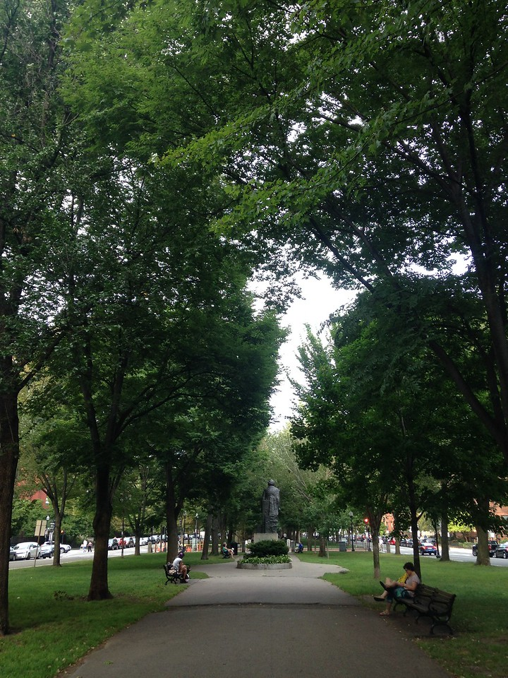 The Commonwealth Avenue Mall.