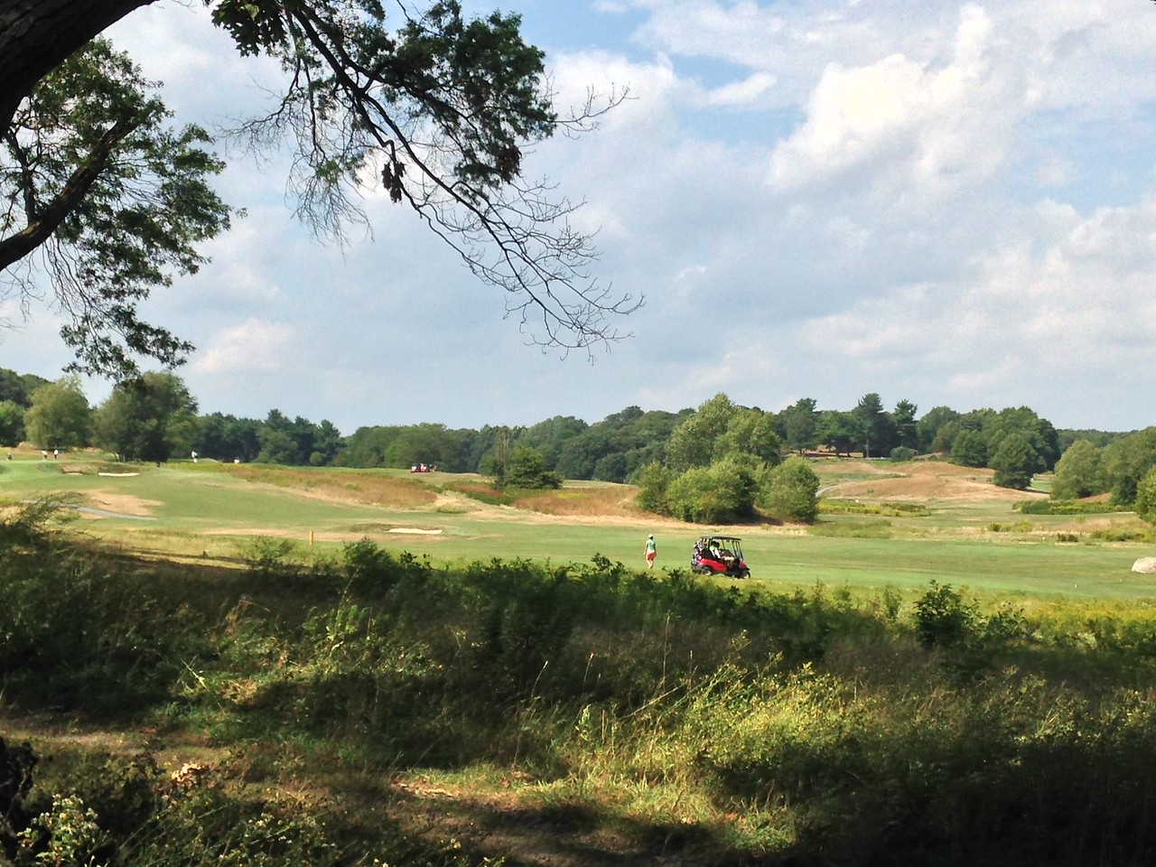 Golf course in Franklin Park.