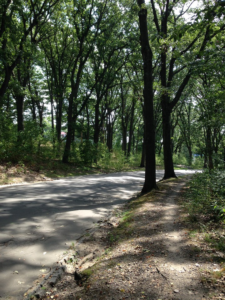 One of the walking paths in Franklin Park.