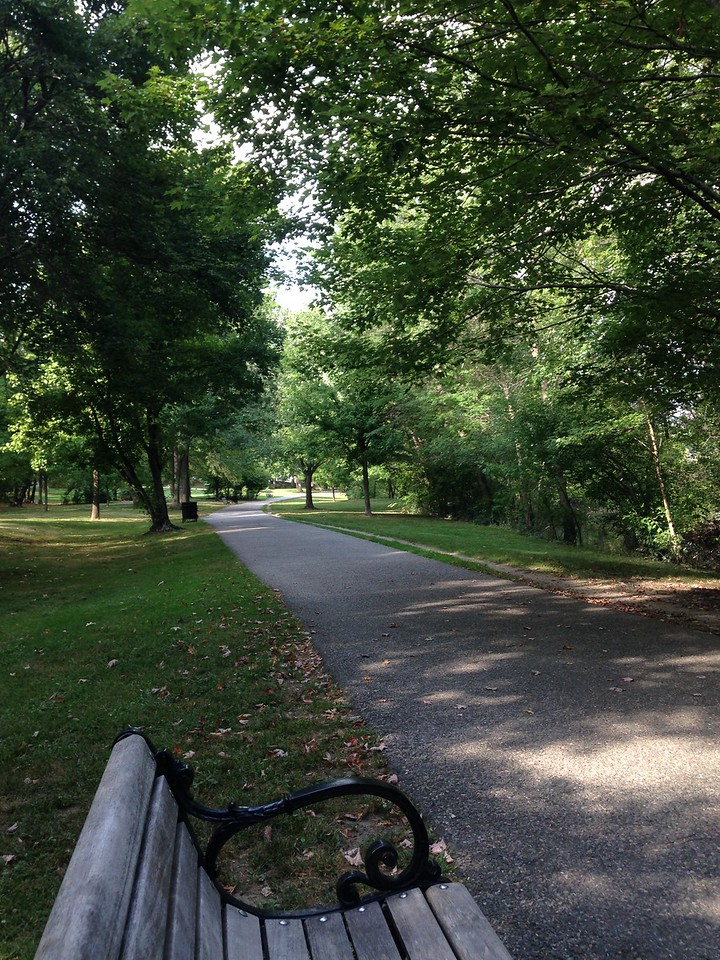 Walking through Olmstead Park along the Jamaicaway, beween Jamaica Pond and the Riverway.