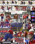 Moose  Euro 06