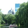Swan Boat ~ Boston Common
