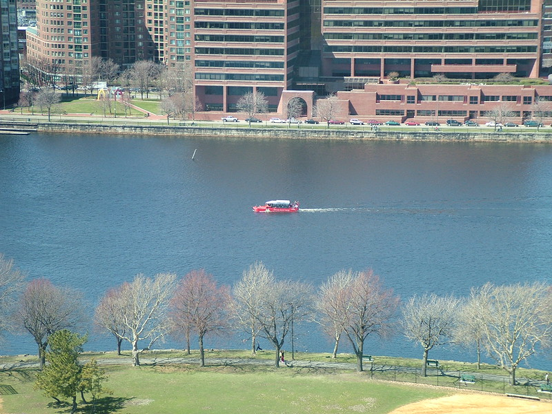 Duck Boat ~ Boston, MA