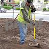 Russ Chafee Sr. using the air spade to stir in the mulch.