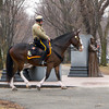 Mounted patrol on Commonwealth Avenue Mall