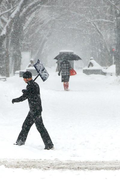 DSC_9904 - Version 42011-01-21Taking snow in stride Commonwealth Mall© 2011 Penny Cherubino