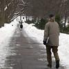 DSC_0447 - Version 22011-02-03Walkers Public Garden© 2011 Penny Cherubino