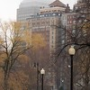IMG_2428 - Version 22011-02-28-Misty, winter, public Garden View© 2011 Penny Cherubino