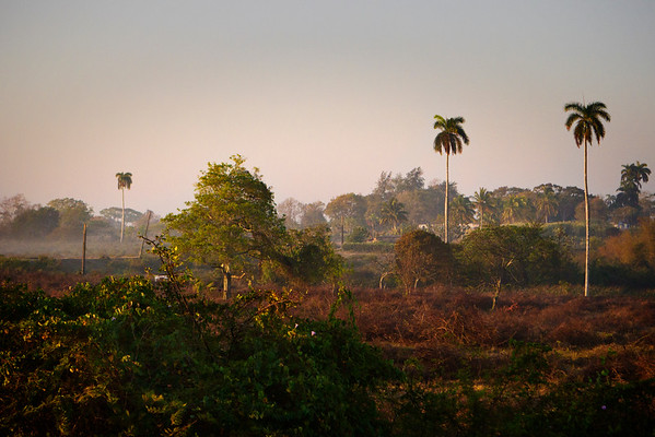 Early morning fog is seen out of the train car near Hatuey, Cuba during the ride from Havana to Santiago de Cuba.