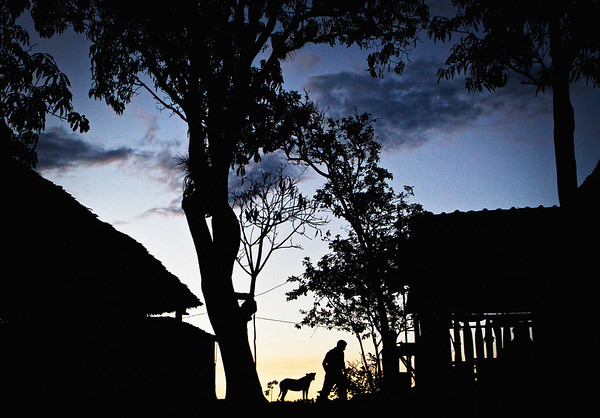 A coffee farmer feeds his dog during the early evening in Viñales, Cuba.