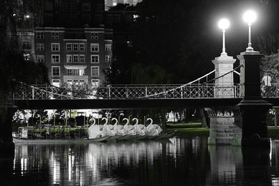 The Swans rest at Night, Boston Garden