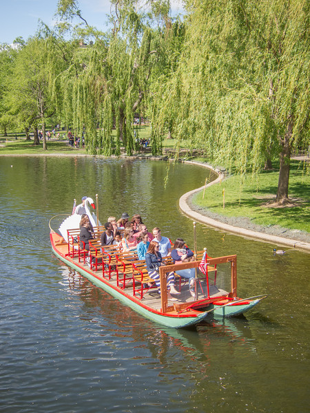 Swan boats - Boston Gardens
