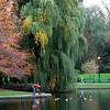 feeding ducks Public Garden