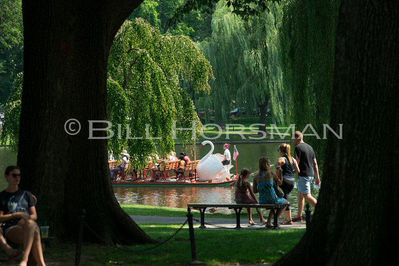 15-SwanBoats-026