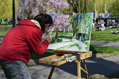 2013-05-01 Boston Public Garden ArtistYou know it is spring when the local artists are out on the common capturing it in its beauty.  Thank you for all the comments on my wild tulip shot yesterday.