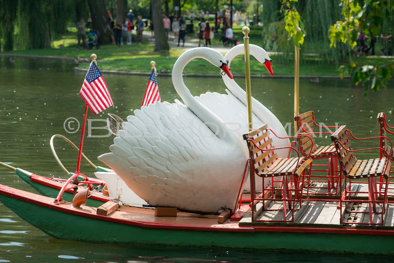 15-SwanBoats-079