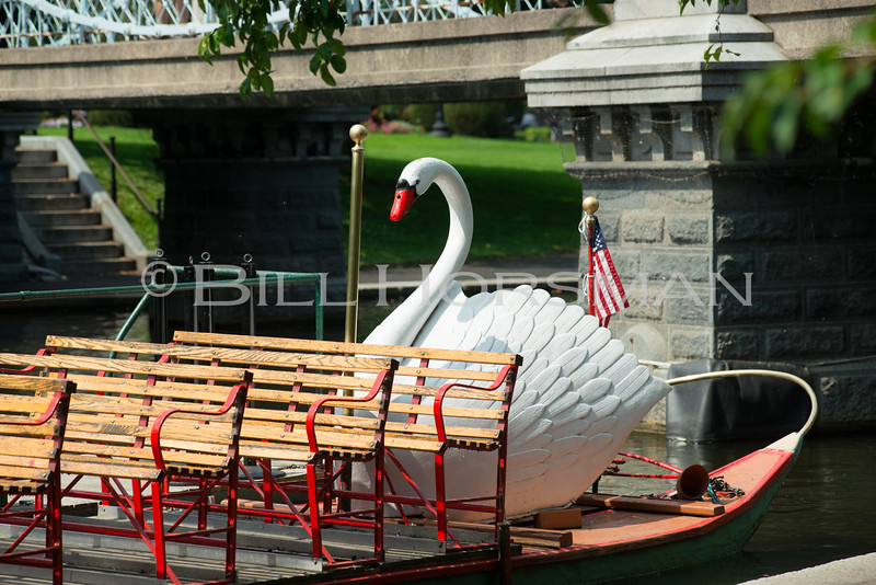 15-SwanBoats-057